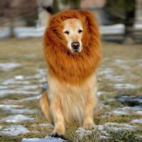 Soft Pet Dog Cats Costume Lion Mane Wig For Halloween Clothes Fancy Dress Up