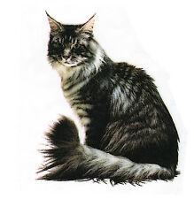 CAT: MAINE COON  Fabric Quilt Set - Twelve Identical 6 inch fabric squares