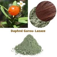 Extrait De Plante Daphné Garou (Lazaze) Poudre Bio Soin Capillaire Naturel 100 g
