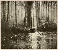 M VANDERKINDERE, Autumn Sun, Vintage 1905 Tipped-in Halftone, Pictorialism