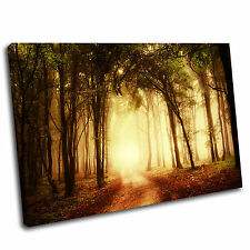 Bright Forest Landscape Canvas Wall Art Print Framed Picture 41 PREMIUM QUALITY