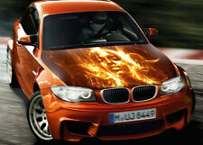 Flame Face Girl Full Color Graphics Adhesive Vinyl Sticker Fit any Car Hood #038