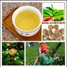 Green Tea Tree 10 Pcs Seeds Bonsai Garden Perennial Plants No Flowers Heirloom N