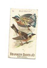 Franklyn Davy Birds cigarette card from 1896
