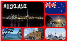 AUCKLAND, NEW ZEALAND - SOUVENIR NOVELTY FRIDGE MAGNET - NEW - GIFT / XMAS