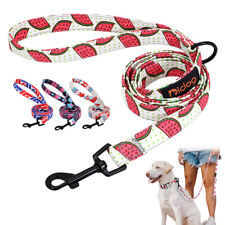 5ft Nylon Dog Leash Strong Training Walking Leash for Small Medium Large Dogs