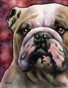 BULLDOG Watercolor Painting Dog 8 x 10 ART Print by Artist DJ Rogers