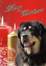 Tibetan Mastiff Dog A6 Christmas Card Design XTIBMASTIFF-1 by paws2print