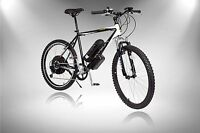 500W Electric Bike, Lithium-Ion electric motor bicycle, e-Bike, Power eBike,