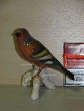 +# A015583_05 Goebel Archiv Muster Tier Animal Vogel Bird Fink Finch auf Ast