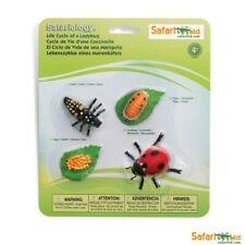 Painted Educational Replica Safariology Set - Life Cycle of a Ladybug