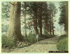 c.1890 JAPAN ROAD AT HAKONE GENUINE ANTIQUE ALBUMEN PHOTOGRAPH