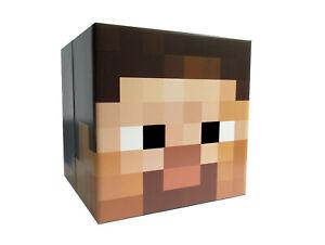 Minecraft Pappkopf STEVE