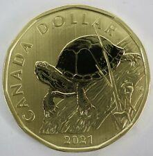 2021 Canada $1 Blanding's Turtle Specimen Dollar Coin