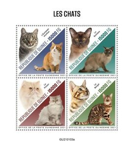 Guinea Cats Stamps 2021 MNH European Shorthair Burmese Bengal Persian Cat 4v M/S