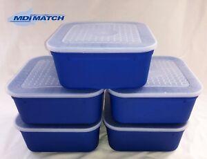 MDI Match 2.2 Pint Fishing Blue Maggot Bait Boxes + Lids Pack of 5