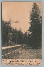 Lovers Lane LENNOXVILLE Quebec—Dirt Road PC Rare Antique CPA Sherbrooke 1907