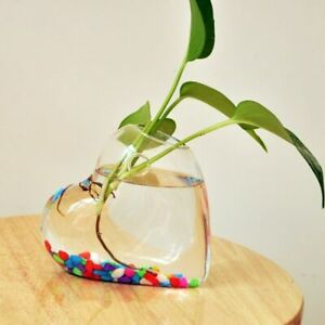 Heart Shaped Clear Vases 12.5x12.5x5.5cm Glass Hanging Flower Containers Decors