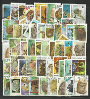 ANIMALS WILDLIFE Collection Packet 50 Different WORLD Stamps