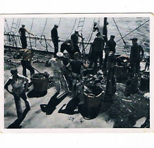 "BLD. desde el LBN. el marineros: ""puramente barco"" nº 54"
