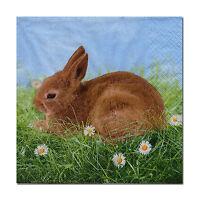 4 Motivservietten Servietten Napkins Ostern Kaninchen Hase Osterhase (283)