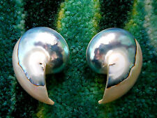 Kenneth Jay Lane Blue Sea Pearl Nautilus Shell Clip Earrings