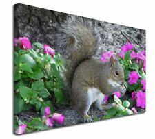 More details for squirrel by flowers x-large 30