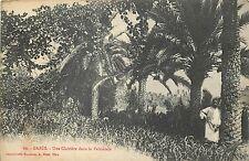 TUNISIE gabes une clairiere dans la palmeraie