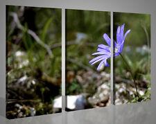 Quadri moderni paesaggi natura LILLA FLOWER fiori stampe su tela canvas 130x90