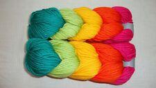 2 Skeins Caron Pantone Acrylic/Nylon/Merino Wool Yarn Lollypop Whirl New