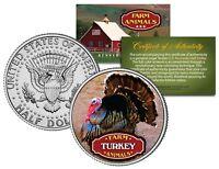 TURKEY Farm Animal Collection Genuine JFK Kennedy Half Dollar U.S. Coin with COA