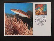 FRANCE MK 1978 FISCHE FISH MAXIMUMKARTE CARTE MAXIMUM CARD MC CM a7700