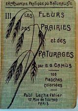 Les Fleurs Des Prairies et des Paturages