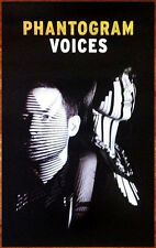 Phantogram Voices 2014 Ltd Ed Rare New Poster +Free Indie Rock Pop Poster!