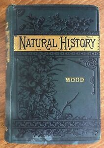 Natural History by Rev. J. G. Wood, 1883, Illustrated w/300 Engravings, 423 Pgs