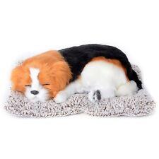 Saint Bernard Puppy Pet Cat Dog Sleeping on Warm Super Soft Mat for Dad