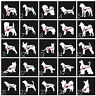 Love My Dog and Cat Car Decals LOTS OF BREEDS Dog and Cat with Heart 4 Inch