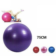Gymball Palla Da Ginnastica Gonfiabile Yoga Pilates Fitness 75Cm circa hmj