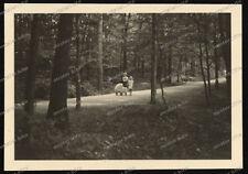 Stuttgart-Wildpark-Wald-Park-Landschaft-Mädchen-Puppenwagen-Cute-Girl-Boy-1940