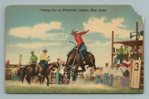 """""""Coming Out On Whirlwind"""", Gillette, Wyoming Rodeo, Postcard"""