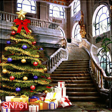 Christmas 10'x10' Computer-painted Scenic Photo Background Backdrop SN761B881