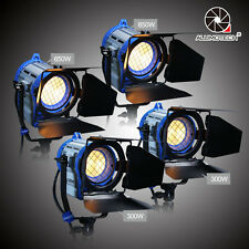 Pro Film 300wX2+650WX2  Dimmer Built-in Fresnel Tungsten Light Fit Arri bulbs