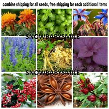 58 Variety Herb Seeds Garden Aromatic Spices Plant Vegetable Medicinal Heirloom