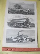 Vintage Print,RICE FARMING LOUSIANA,Harpers,Aug 1876,Occupation
