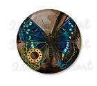 """Steampunk Butterfly Nature Lovers Hand pressed Mirror, Magnet or Pin 2.25"""""""