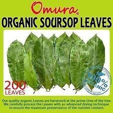 Omura ORGANIC Soursop Guanabana Graviola Guyabano Leaves for TEA Pack of 200 ...