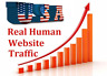 100,000 Real Visitors and  SEO Submit Website Web Advertising