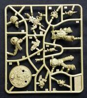 Plague Marine Bolter Space Marine Hero 3 Death Guard Warhammer 40K Chaos Nurgle