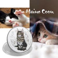 WR 2015 Vanuatu Silver Proof 5 Vatu Coin Maine Coon Cat Series Collect Gifts Boy
