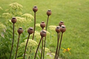Set of 3 Medium Metal Poppy Seed Heads Decorative Garden Rusted Support. 1.12m